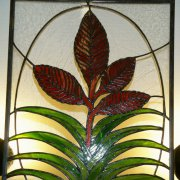 image 25-div9-seca-stained-glass-vriesea-polemanii-jpg