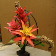 image 30-div7-serpents-3-guzmania-inflorescence-sculpture-wood-jpg