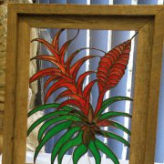 image 64-best-art-award-of-excellence-my-bromeliad-collection-jpg
