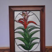 image 27-best-of-div10-guzmania-stained-glass-jpg