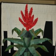 image 71-merit-quilt-my-kind-of-bromeliad-jpg